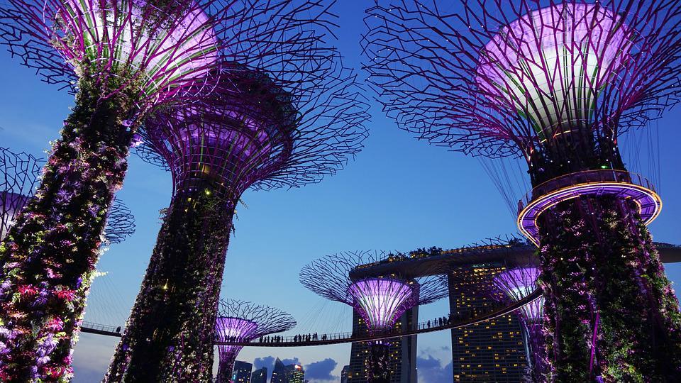 Jardin Singapour