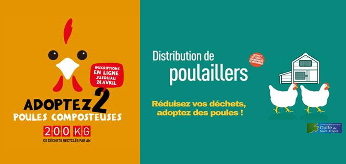 poulailler collectif